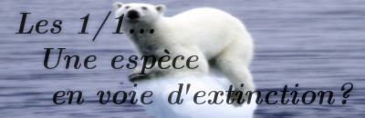 Les 1/1... br / Une espèce en vois d'extinction?